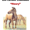 "Um cavalo chamado""Heury"""